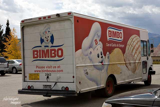 American Bimbo