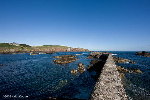 harbour wall st abbs