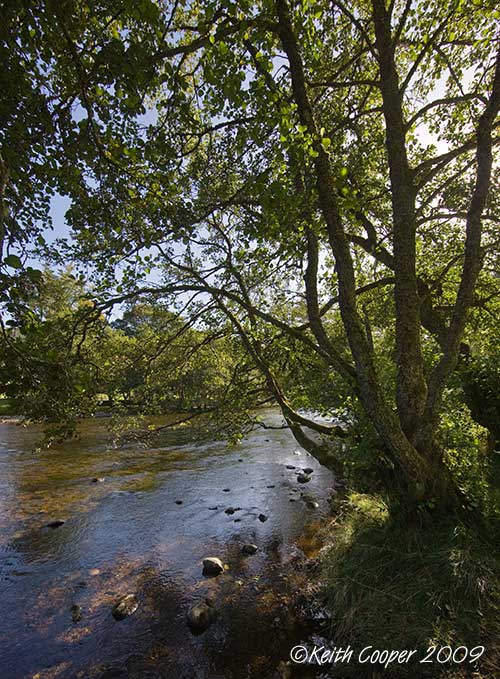 glen lyons river at balgie