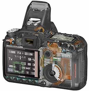 50D cutaway view