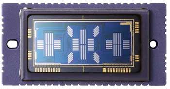 5d3 af sensor