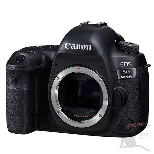canon 5D4 front view