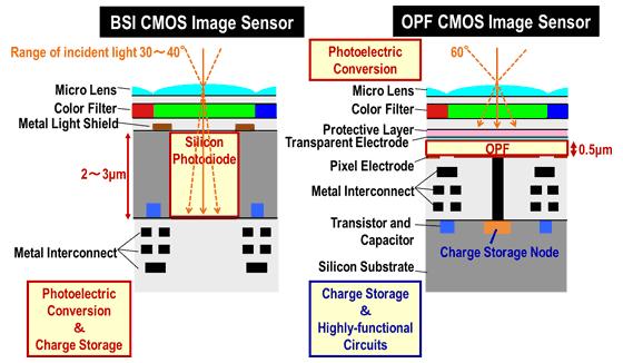 organic photo sensor