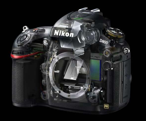cutaway view of Nikon D800