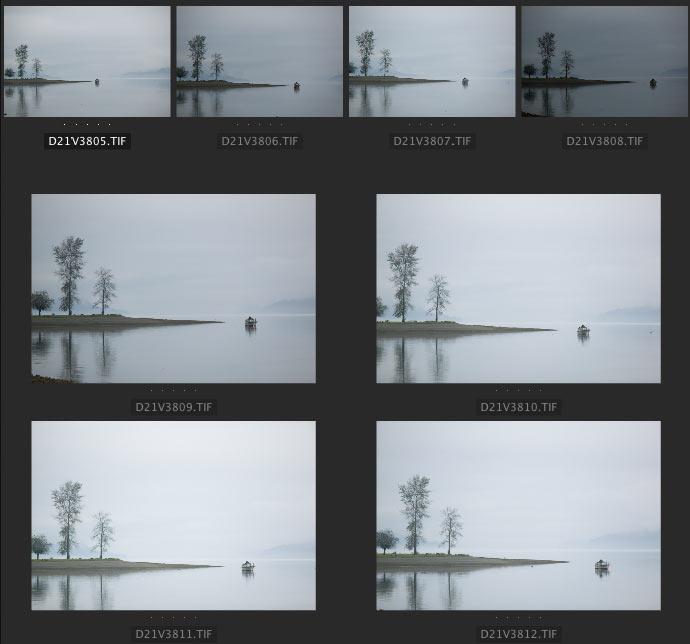 all eight photos taken