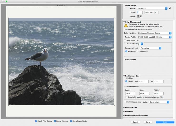 printing from photoshop using ifa56 custom profile
