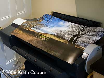borderless 24 inch print