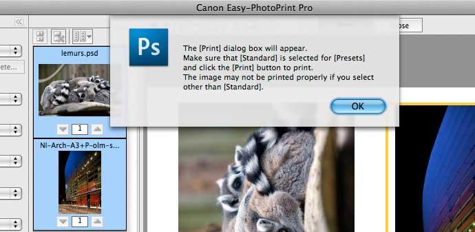 standard print preset use