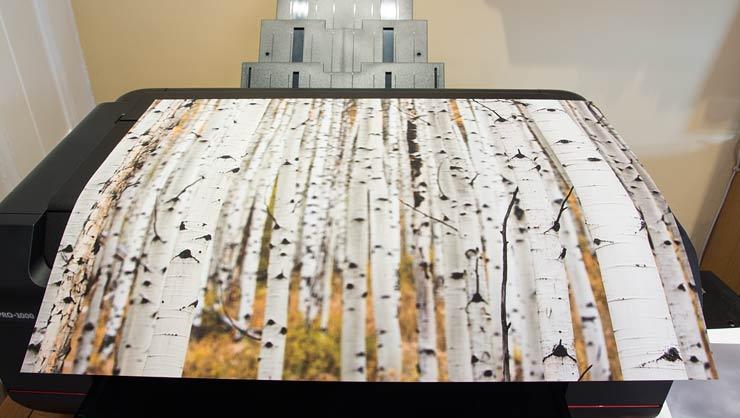 borderless print on manual feed art paper