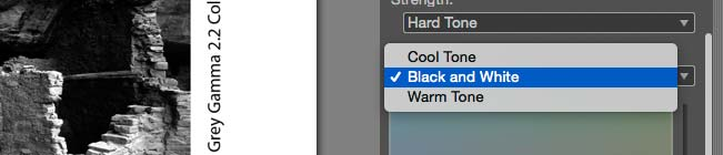 toning options for BW