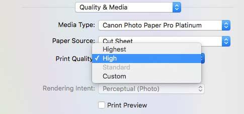 setting print quality
