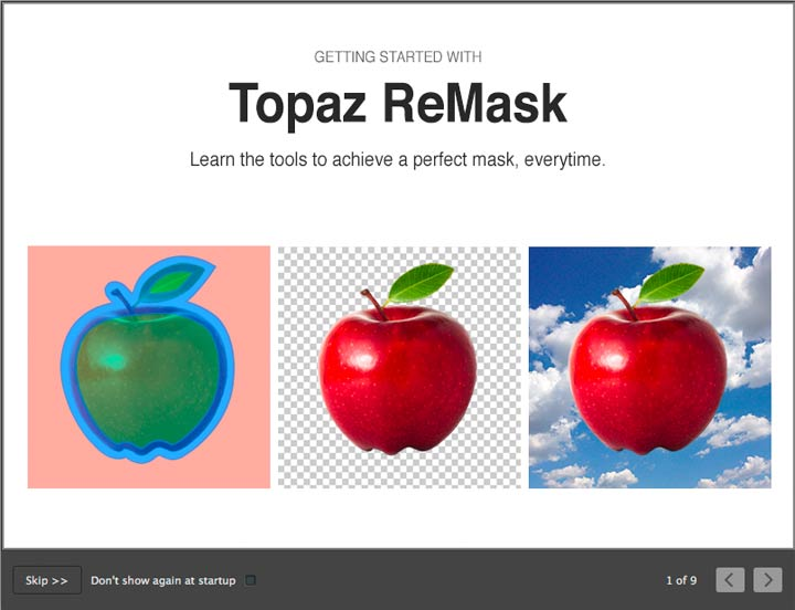 masking options with remask