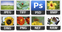 input file formats