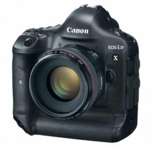 the new Canon 1D X