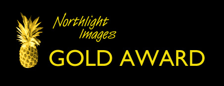 The prestigious golden pineapple award from Northlight Images