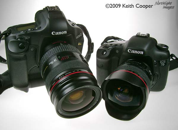 1Ds3 and 7D