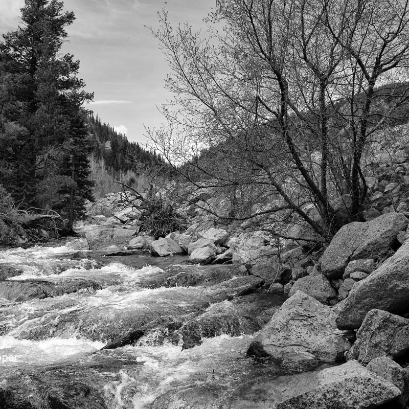 Stream - Rockies