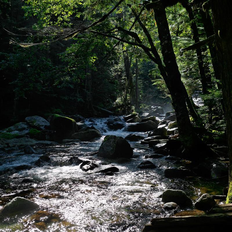 Cascades river 2