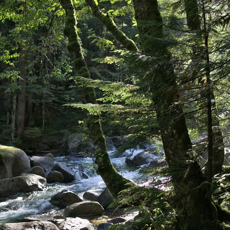 Cascades river 3