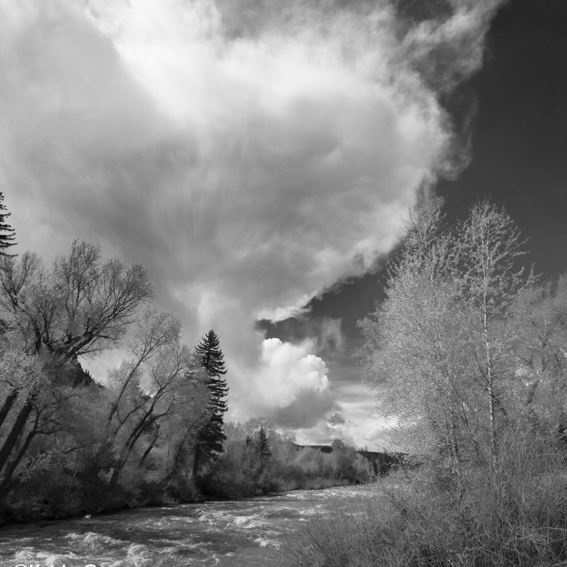 Eagle River 1