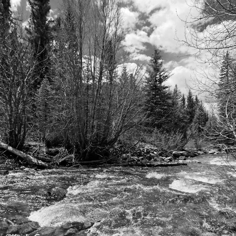 Mountain stream 8