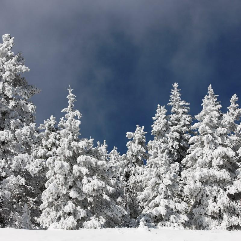 Fresh snow in the Rockies