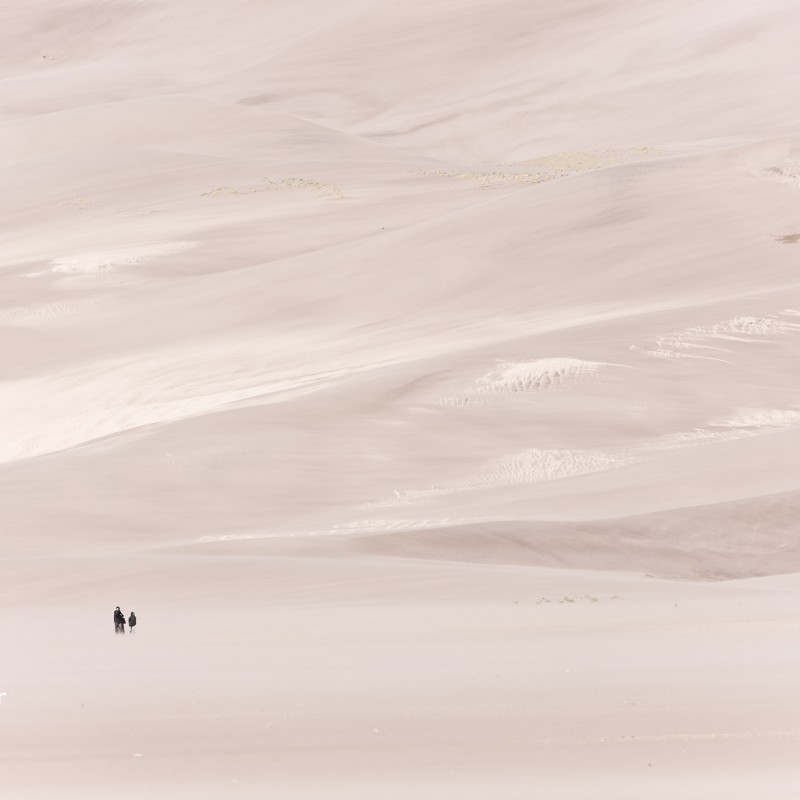 Windy day in the Dunes