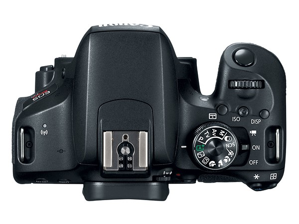 800D top view
