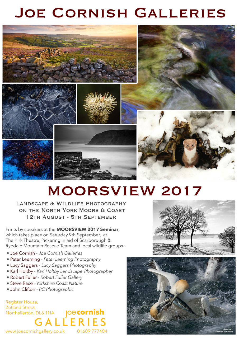 Moorsview 2017 Exhibition Poster