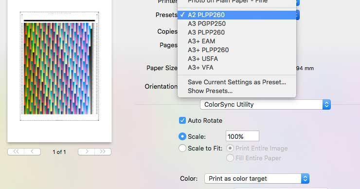 paper presets