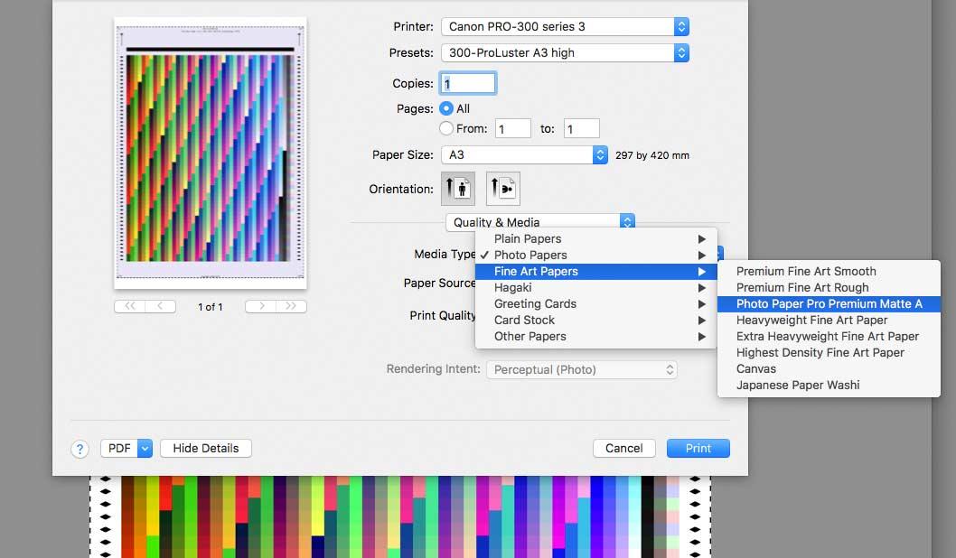 print-a-profiling-sheet