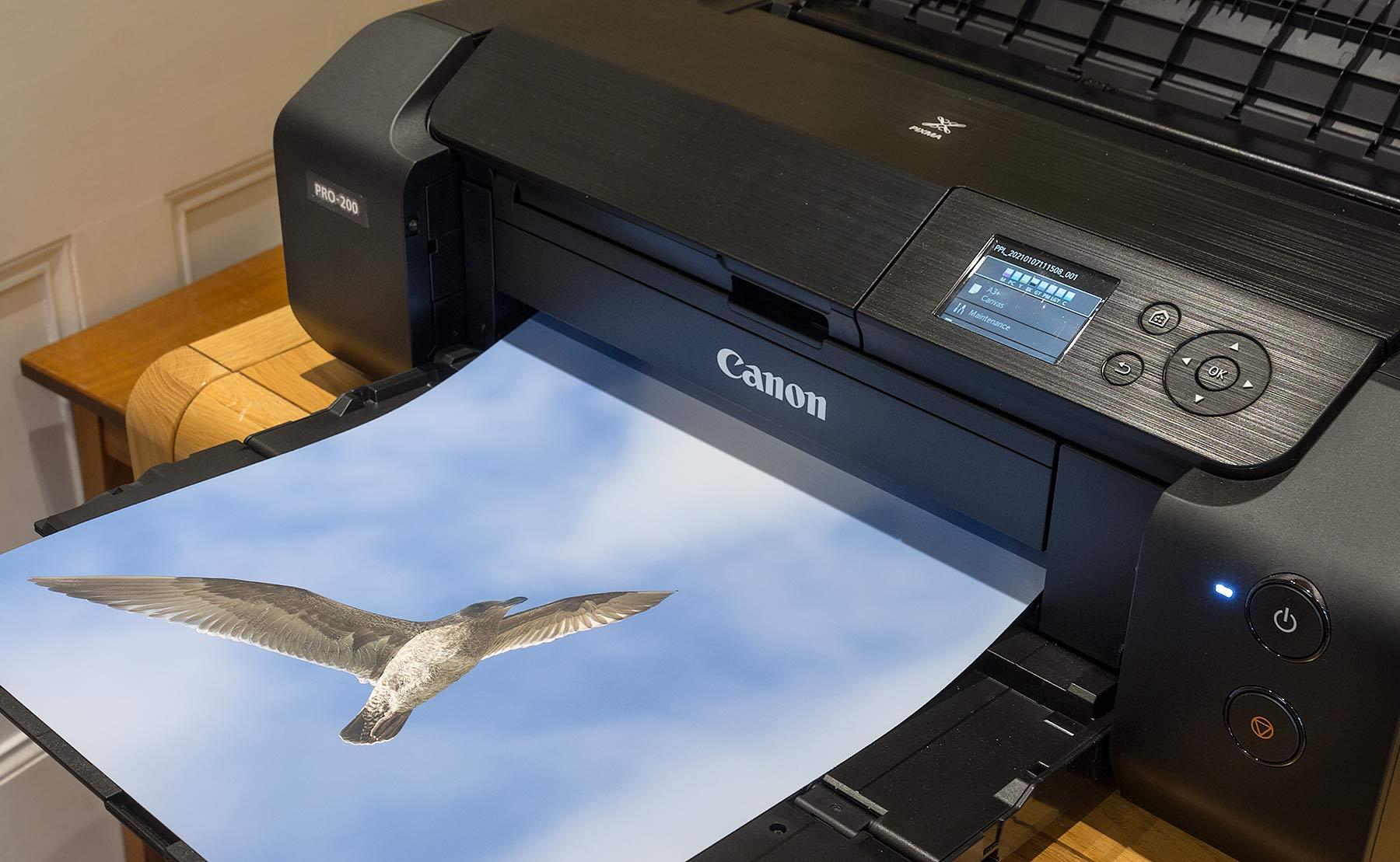 pro-200-printing